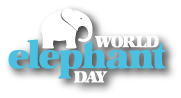 world_elephant_day