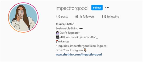 Instagram Influencers - Influencer Instagram Bio