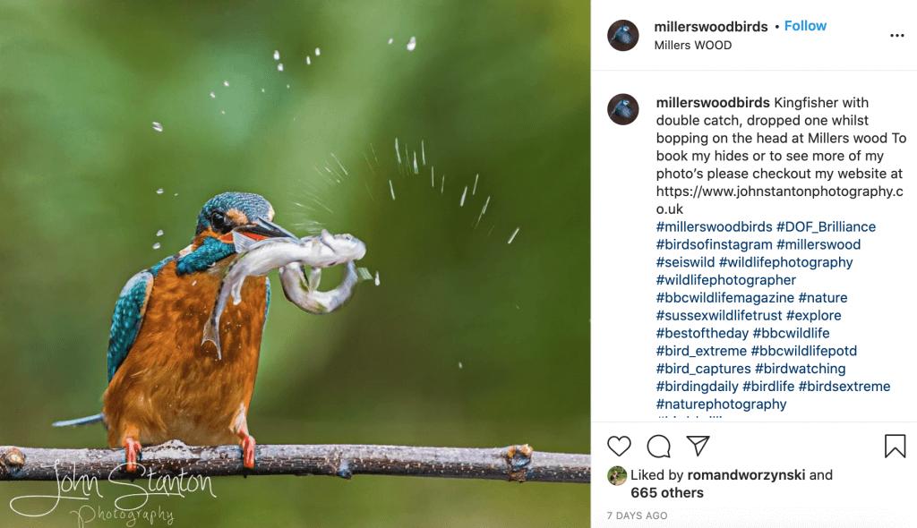 Post Description Keywords for Instagram Optimization